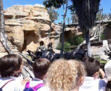 3º de Educación Primaria visita el Biopark de Fuengirola