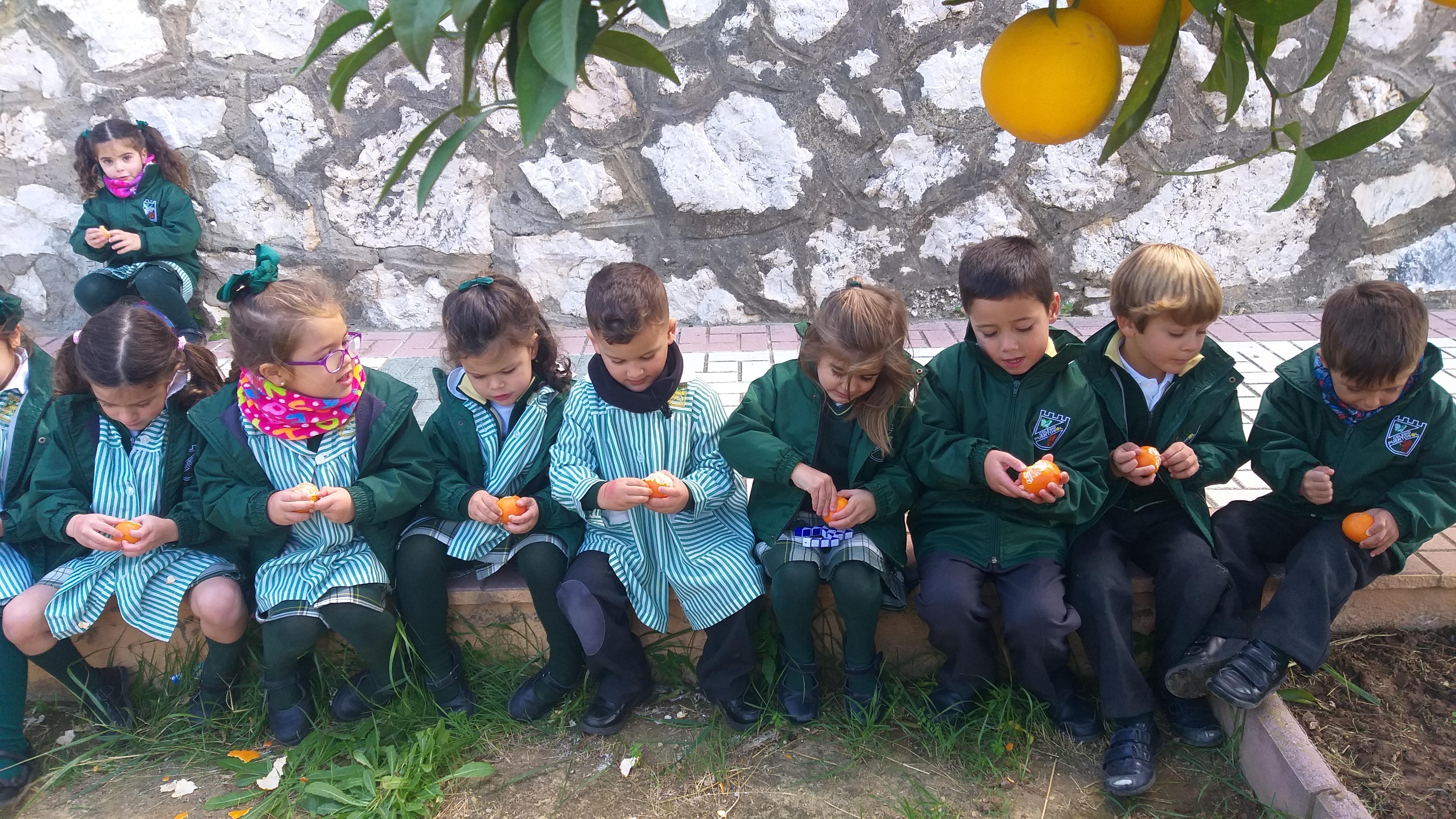 Árboles frutales (E.I)